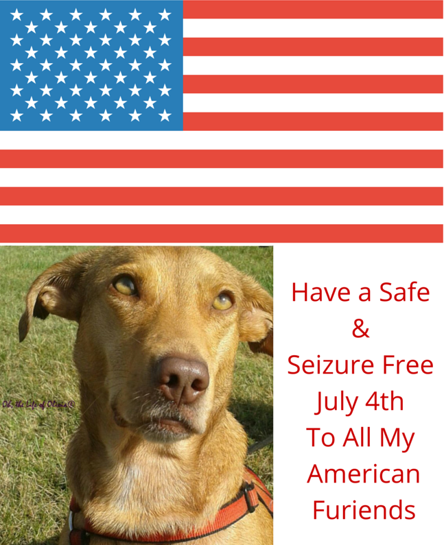 Have a Safe & Seizure Free July 4th To