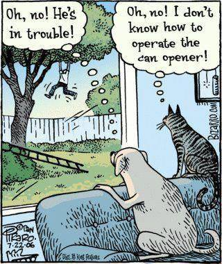 Funny-dog-an-cat-cartoon