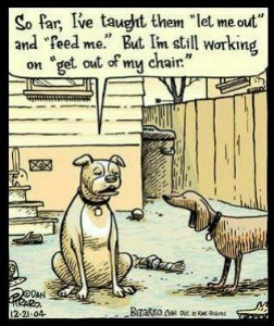 dog-humor-cartoon-21770872