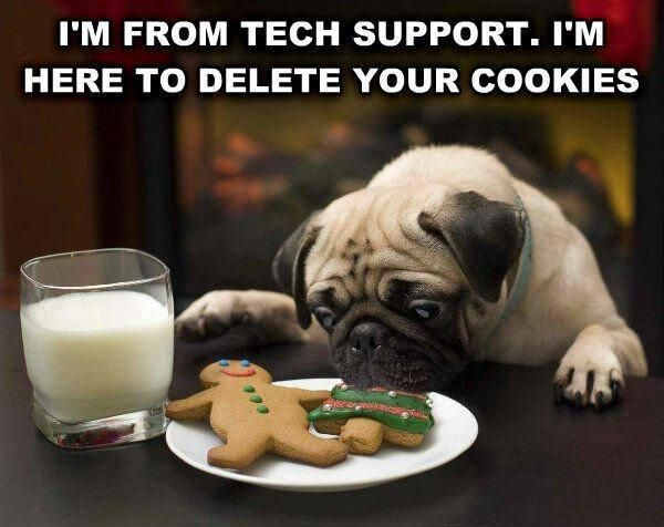 dog tech eat cookie