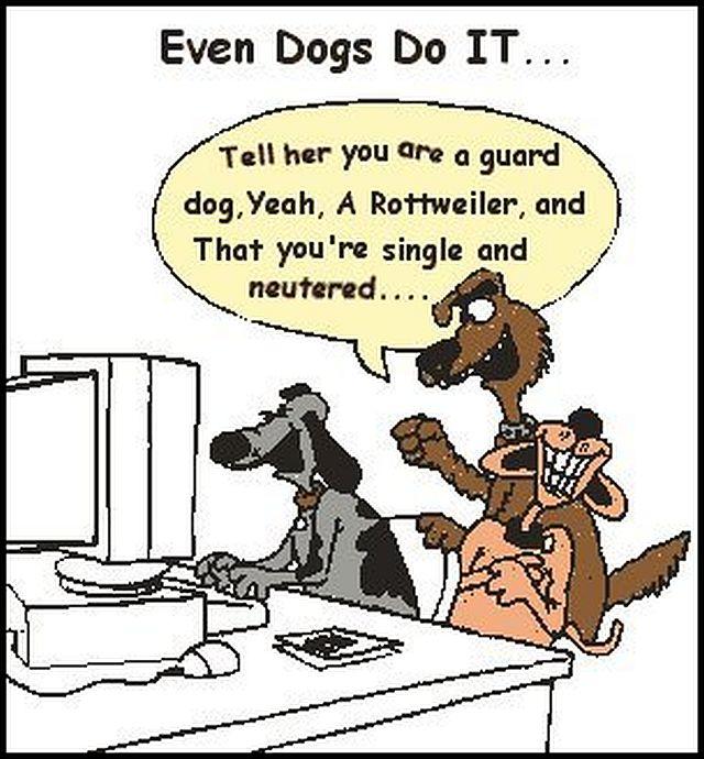19_dog_humor(1)