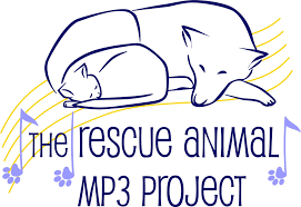 mp3 project1