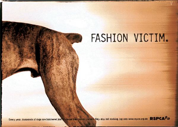 campaign-against-dog-tail-docking-fashion-victim