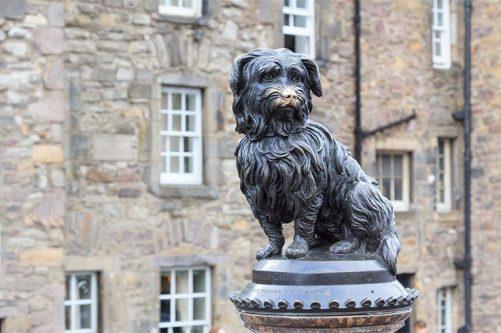 Dog-Monuments1