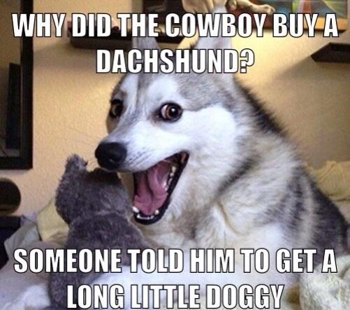 pun-dog