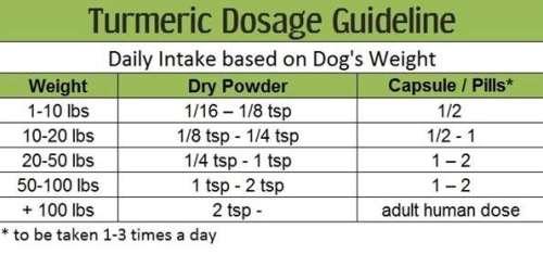 dog-dosage1
