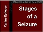 Stages of a Seizure
