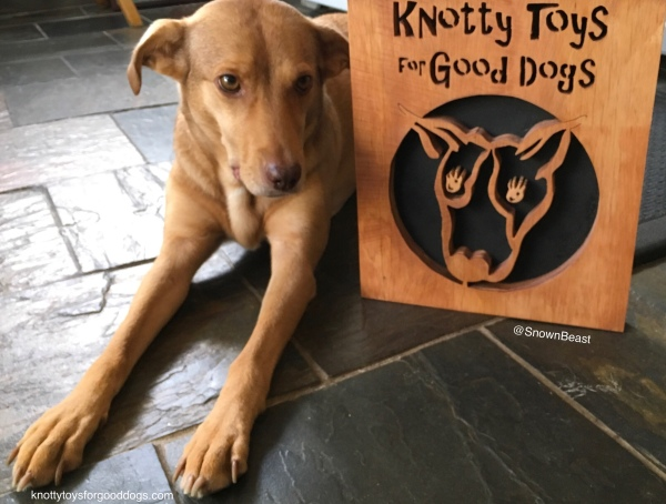 Knotty Toys for Good Dogs sign