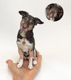 lifelike mini sculpture of dog