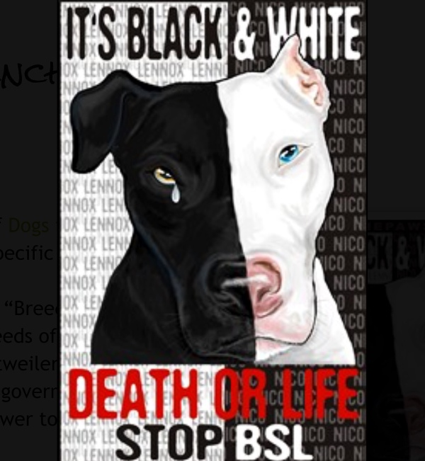 stop BSL poster