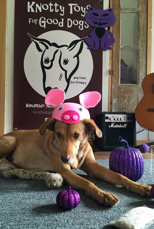 Olivia prepares for Halloween