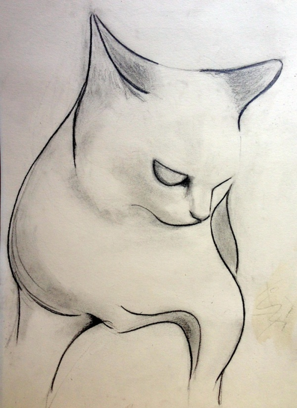 abstract cat drawing