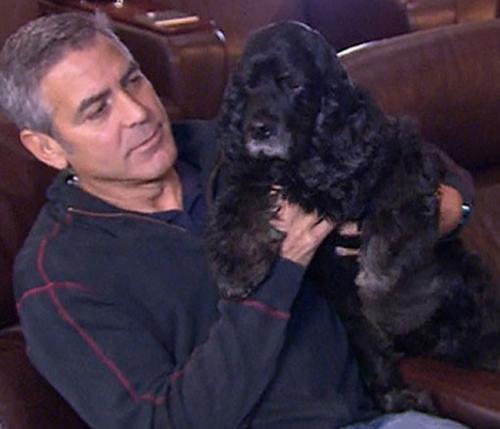 Clooney & Einstein