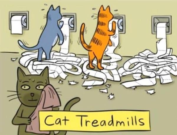 Cat Treadmill cartoon
