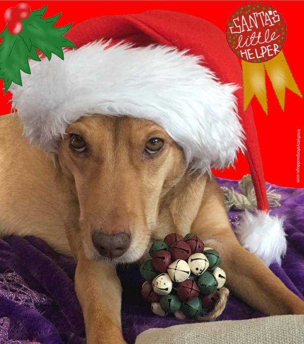 A festive CEO Olivia