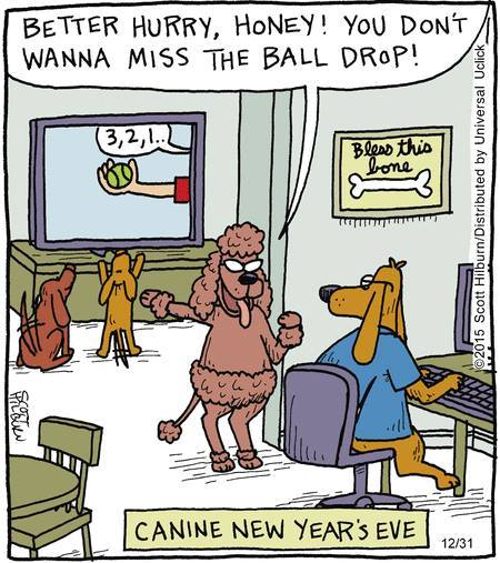 New Years Ball drop for dogs