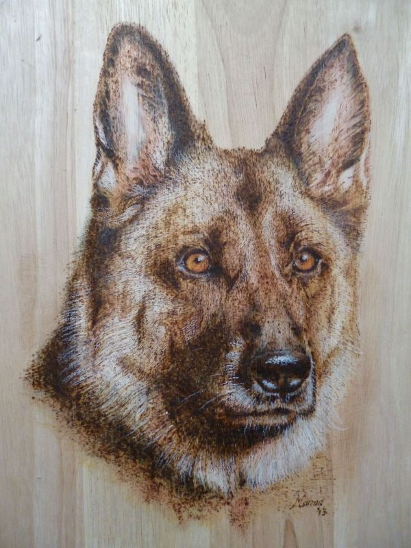 German Sheppard wood burning