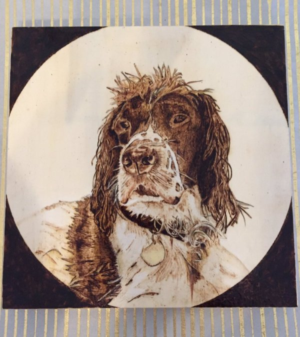 spaniel wood burning