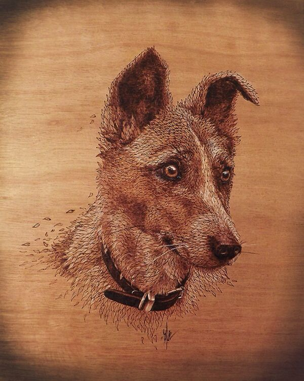 terrier wood burning