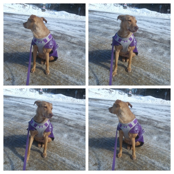 Olivia in her purple coat