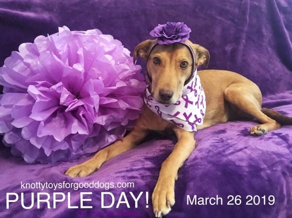 CEO Olivia goes purple